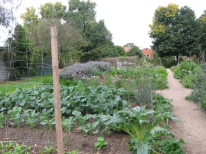 Kitchen garden adjacent to Heide I