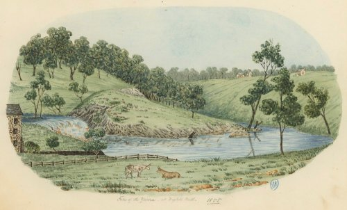 Falls of the Yarra  at Dights Mill.