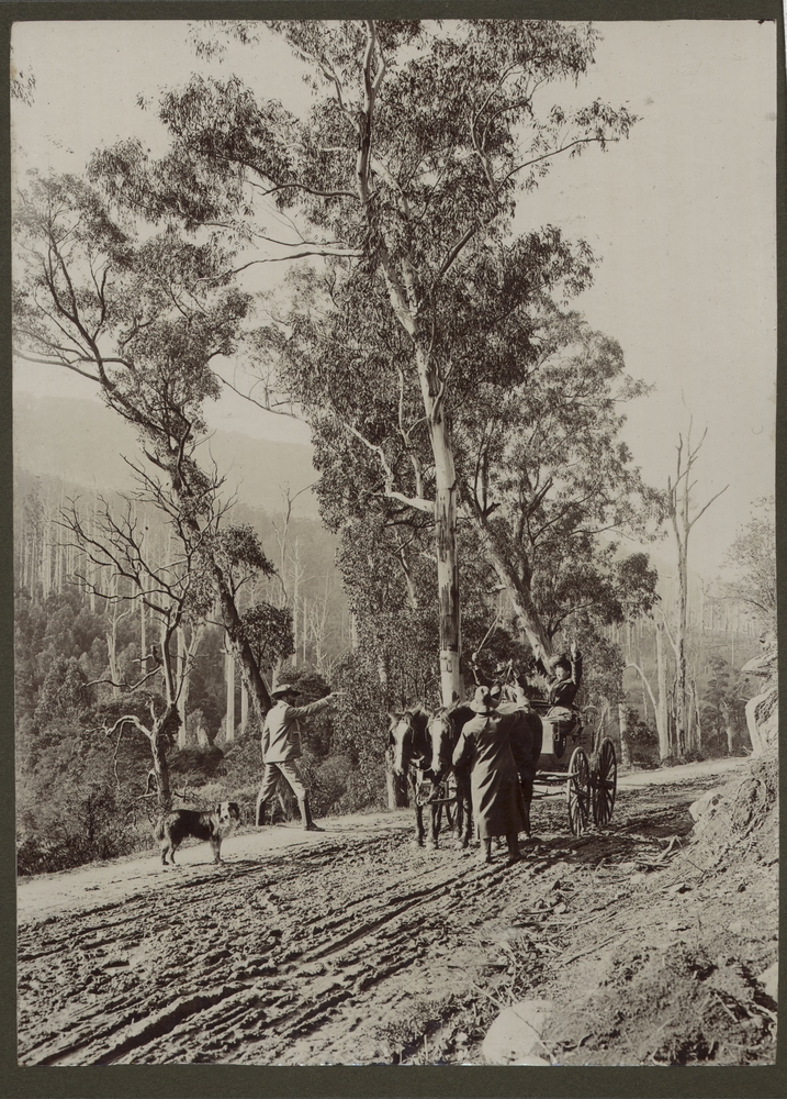 Reenactment of a bushranger robbing some travellers on a country road