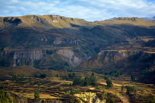 colca-valley-landscape-in-arequipa-peru_800